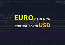 EURO Gain New Strength Over USD Thanks to the Latest ECB Stimulus